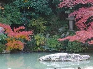 巨石と紅葉