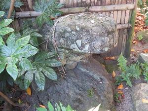 石のカエル